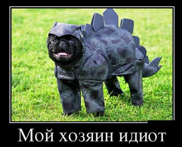 8 май праздник в украине